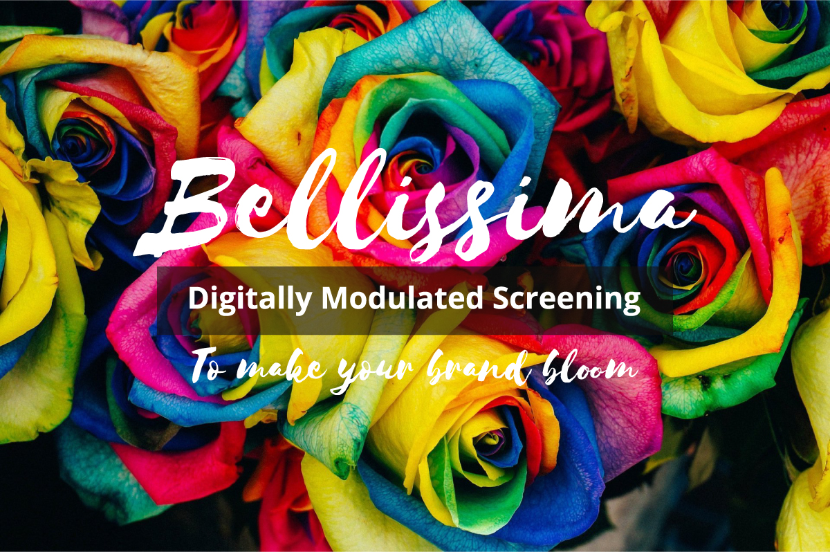 Bellissima DMS To Make Your Brand Bloom